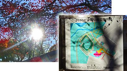ファイル 2130-1.jpg