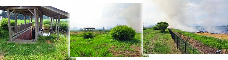ファイル 2285-2.jpg