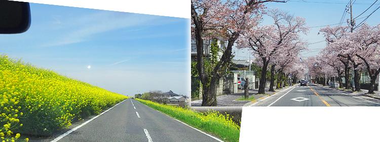 ファイル 13-1.jpg